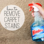 12 Tips To Remove Stains With Carpet Cleaners