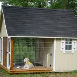 Housing your Canine Friend: Chose the Perfect Dog House