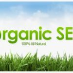 Understanding Organic SEO