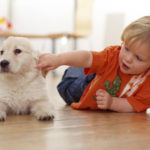 Getting a Pet for your Child