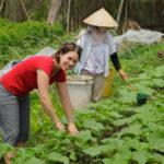 A Healthy World: International Trends in Organic Farming