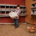 Take Your Kids on a Farming Vacation