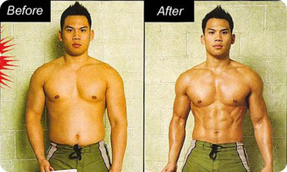 burn the fat feed the muscle tom venuto pdf