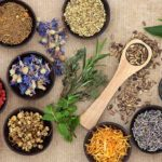Tips for Choosing the Best Natural Remedy