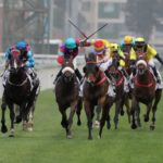 Betting on Horse Racing: From Traditional to Technological
